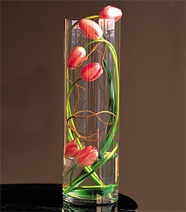 Tulips Under Glass
