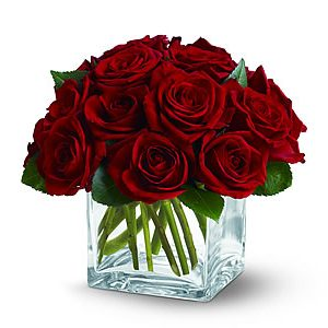 Dozen Rose Contempo