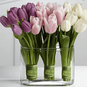 Colourful Valentine's tulips