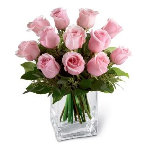 Pink roses in a cube