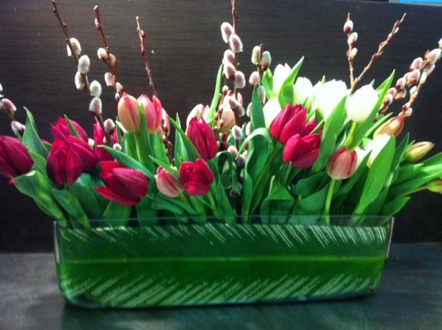 Spring Tulip Garden