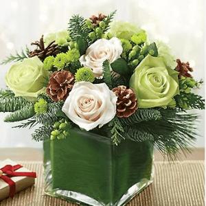 Green Cozy Christmas