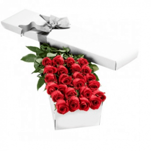 Classic 2 dozen boxed roses - Canadian Forces