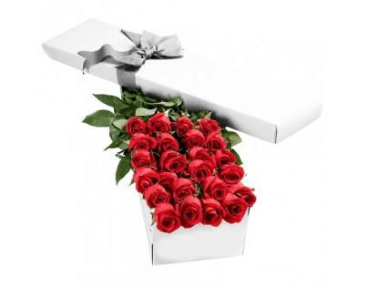 2 dozen boxed roses
