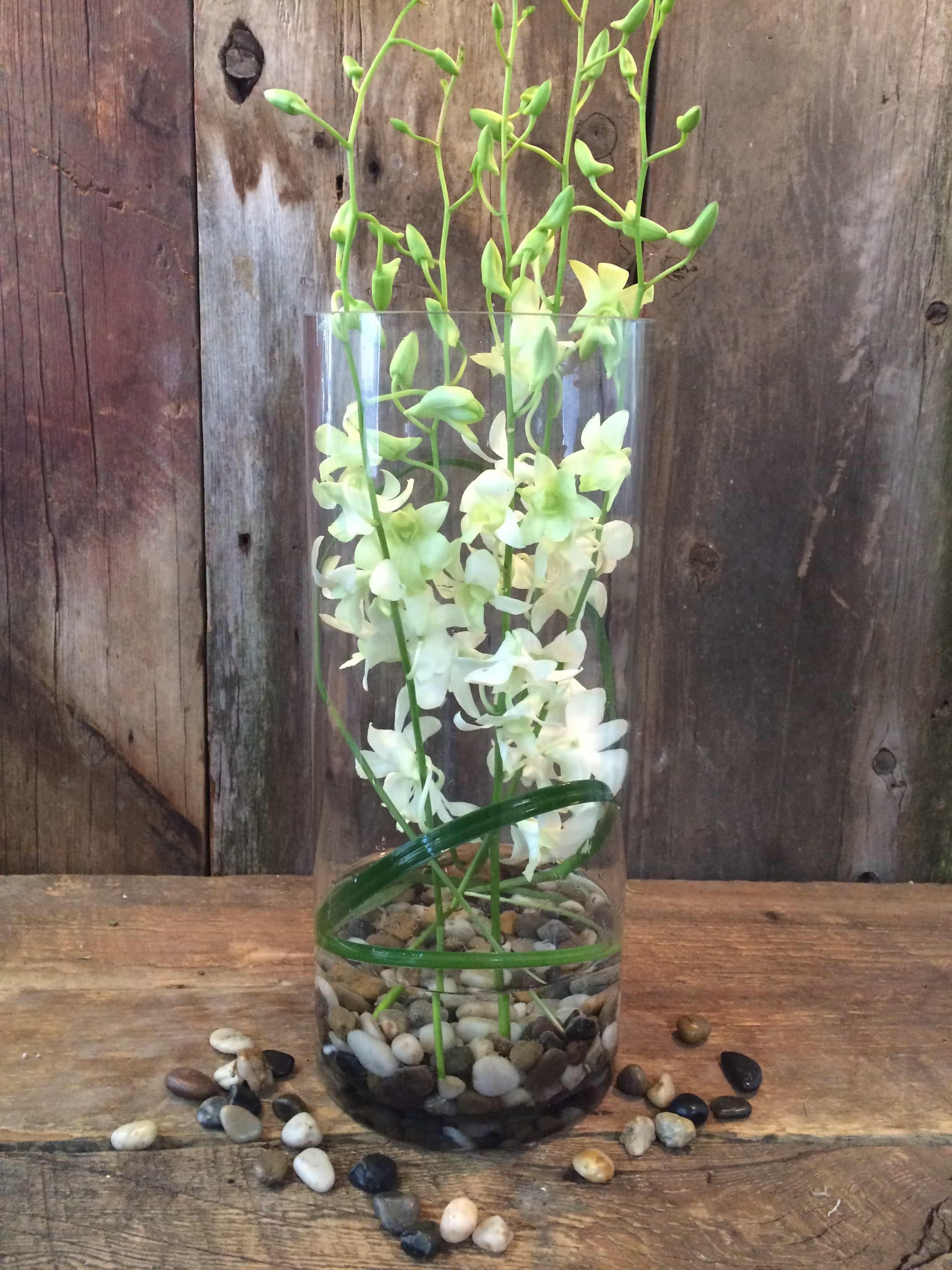 White orchid vase