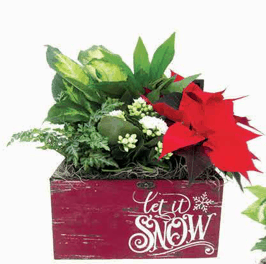 Let it Snow Planter