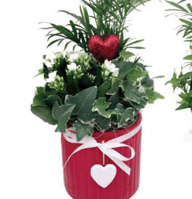 Red heart Planter