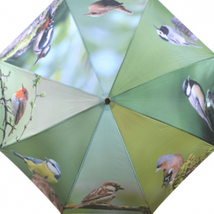 Umbrella - Birdsong