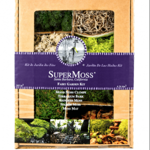 Super Moss Fairy Garden Kit