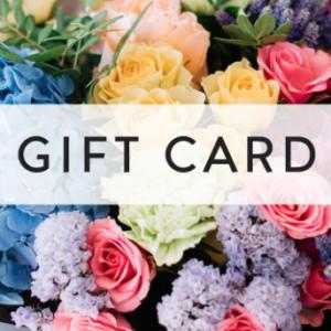 $100 Ladybug Florist Gift Card