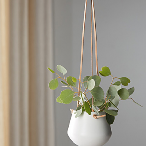 Ceramic Hanging Pot with Plant