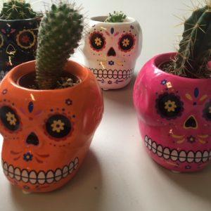 Sugar Skull Cacti